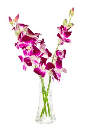 Bouquet Of Purple Orchids In Glass Vase Isolated On White Background