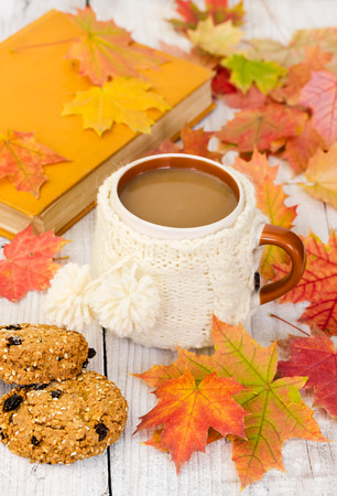 oatmeal cookie: Cup of coffee and oatmeal cookies on wooden background with autumn maple leaves