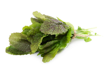 Mustard leaf salad isolated on white background