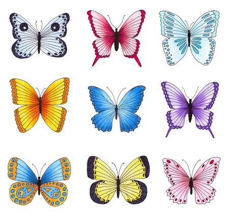 butterfly background: Set of multicolored butterflies isolated on white background. Hand drawn marker illustration. Stock Photo