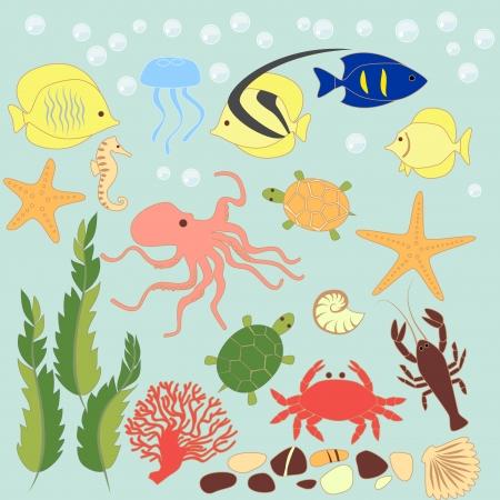 green crab: Sea animals card, vector illustration Illustration