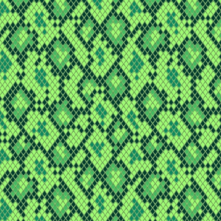 reptile: Snake skin in green seamless pattern, vector