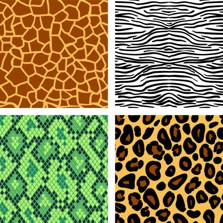 Animal print seamless patterns set, vector Illustration