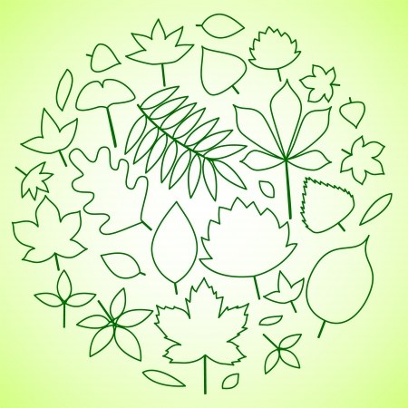 Green leaves circle composition background Vector