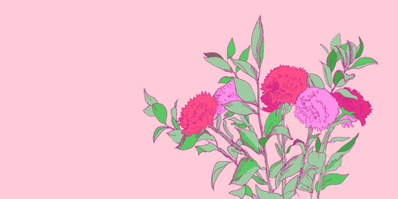 aster: Pink and green hand drawn aster flowers bouquet illustration, vector Illustration