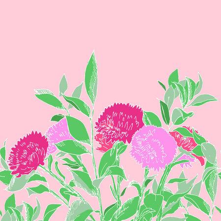 asteraceae: Pink hand drawn aster flowers horizontal seamless pattern, vectorc