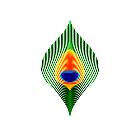 Colorful green orange and blue peacock tail feather, vector illustration