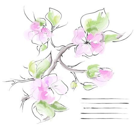 Spring background with branch of sakura. Vector illustration. Vector