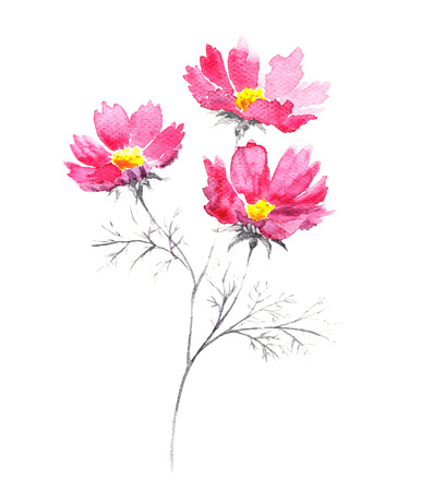 Watercolor bouquet of pink summer flowers. 일러스트
