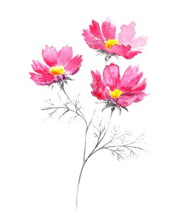 Aquarel boeket van roze zomerbloemen. Stockfoto - 40057913