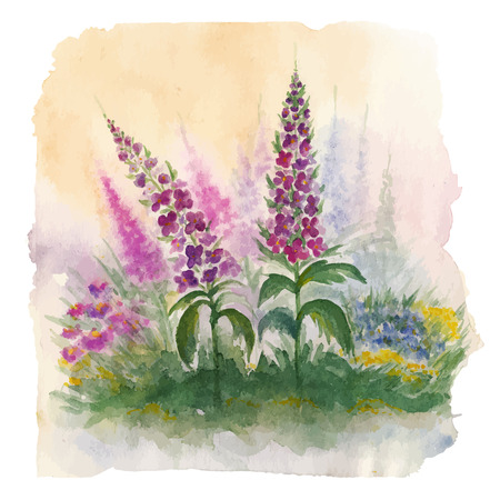 wildflowers: Nature landscape with wildflowers. Watercolor floral illustration.