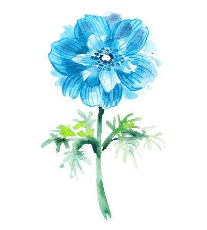 Cyaan aquarel anemoon. Illustratie voor wenskaarten, uitnodigingen, en andere drukwerk projecten.