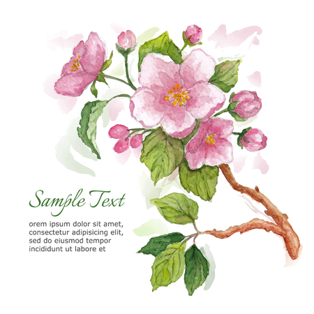 beautyful: Template for greeting card with apple blossoms. Watercolor illustration.