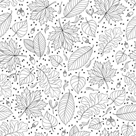 linden tree: Autumn seamless pattern with seeds and leaves. Vector illustration Illustration