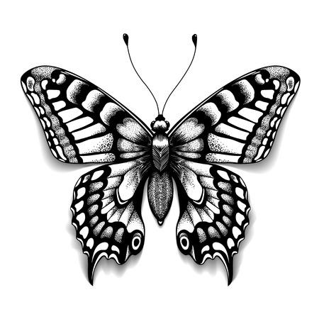 Foot art papillon pour la conception et la décoration. papillon réaliste avec l & # 39 ; ombre. croquis de papillons de soleil Banque d'images - 93819071