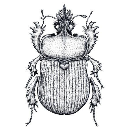 Scarab bug tattoo. Dot work tattoo. Insect. Symbol of eternal life, resurrection, revival