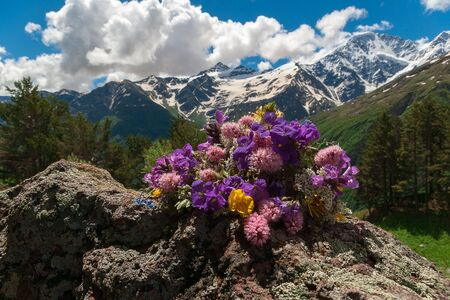 Bright colored field bouquet lies on stone. Mountain landscape. Mountain flowers. Stockfoto