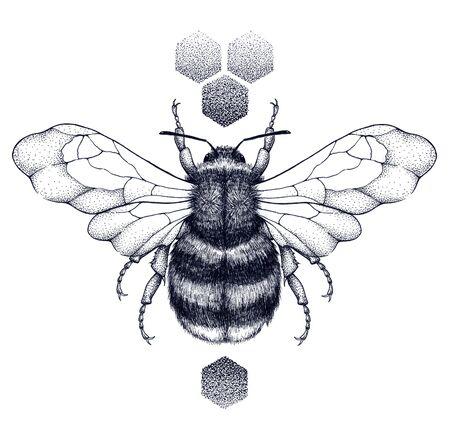 Honey bee and honeycomb tattoo. Dotwork tattoo. Stockfoto - 130674006