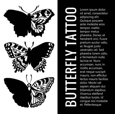 Collection of realistic butterfly tattoos 일러스트
