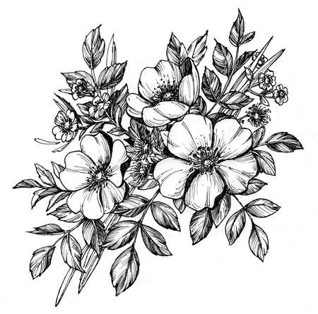 Tattoo branch of flowers. Branch of blooming dog rose. Floral illustration for tattoo, t-shirt design. Tattoo for forearm, thigh, back. Stock Photo