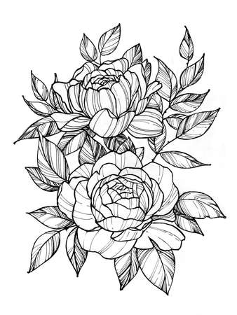 Tattoo branch of flowers. Branch of blooming rose. Floral illustration for tattoo, t-shirt design. Tattoo for thigh, back, forearm Stock Photo