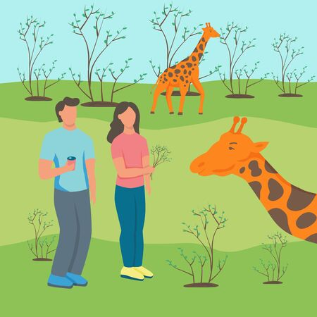 A man and woman in love feed giraffes at the zoo. The concept of people spend time together. Flat cartoon character vector illustration.