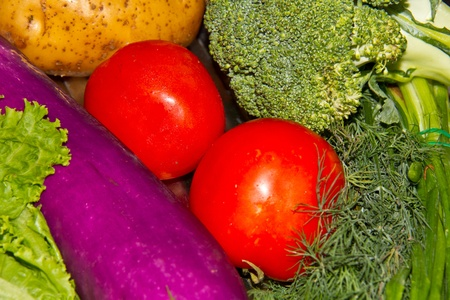 fresh vegetables multicolor for cooking in summer