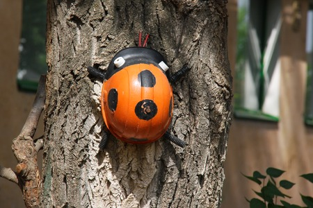 ladybug helmet on the tree in the garden Stock Photo