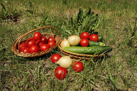 close up of onions in a basket: Vegetables in wattled baskets on a grass outdoors