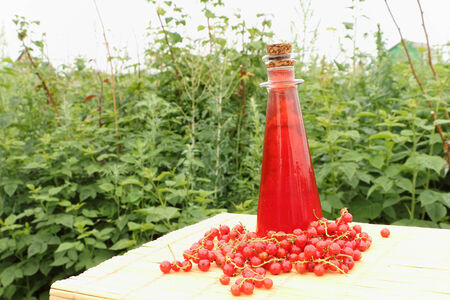 little table: Bottle with red juice and berries of red currant are on a little table outdoors Stock Photo