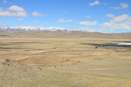 Steppe pasture against the sky and mountains  photo