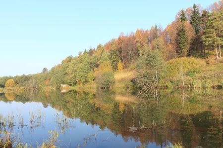 The lake among the autumn wood photo