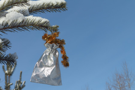 the silvery: Silvery sack with tinsel hanging on a snow-covered pine branch