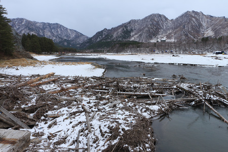 chemal: Coast of the Chemalsky reservoir at the mountain the Camel after a spring flood in Altai