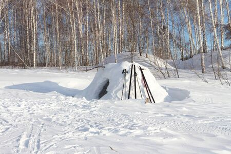 igloo: Snow construction of igloo standing on a snow-covered glade in the winter