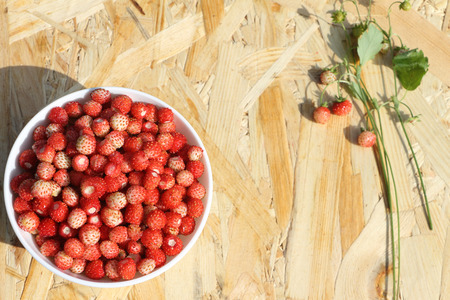 'wild strawberry: Ripe red wild strawberry in a plate on a wooden table outdoors