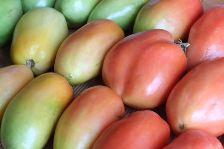 ripen: Background from the ripening tomatoes