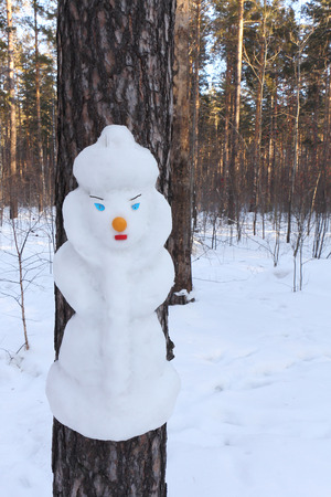 snow maiden: Snowman on a pine trunk in the form of the Snow Maiden Stock Photo