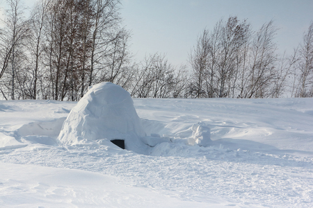 Igloo  standing on a snowy glade  in the winter