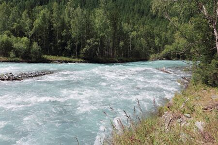 Kucherla River flowing among the Altai Mountains, Russia