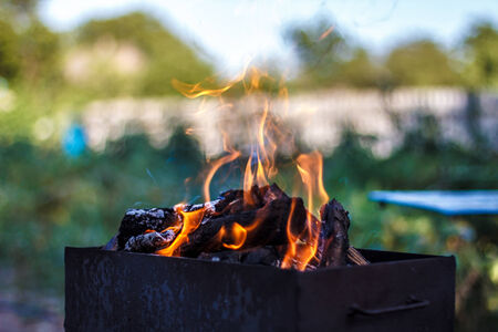 fire flames over burning wood in brazier