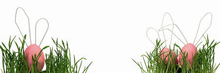 Easter eggs, cute rabbits with white wire ears, peek out from the green grass at the edges of the banner. Easter card, Close-up, white isolated background, selective focus. 版權商用圖片