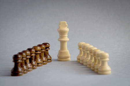 Chess pieces with king, white suit, in the center on gray textured paper background. Concept of education, intellectual games. Selective Focus.