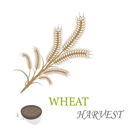 Wheat harvest season symbol and idea 写真素材 - 114181232