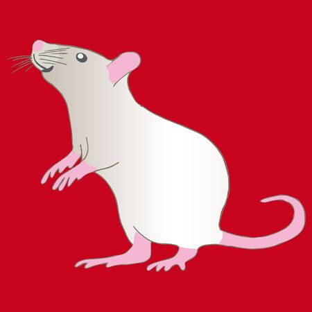 Chinese new year 2020 year of the rat. Curiouse white metal rat on red background. Concept for holiday banner, decor element.  illustration. Stock Illustratie