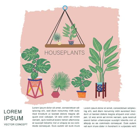 Tropical plants in pots on textured background. Houseplants note and space for text. Postcard, banner, app design. Illustration