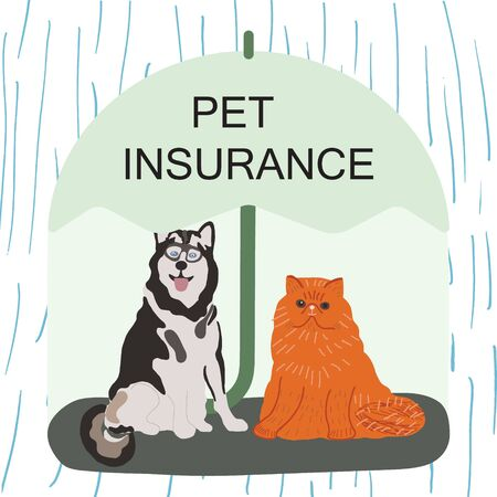 Husky dog and ginger cat under green umbrella with note pet insurance. Pet care banner, background, poster, concept. Flat cartoon style. Vector illustration