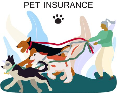 Female dog walker with dogs for pet insurance concept. Pet care banner, background, poster, concept. Flat cartoon style design. Vector illustration.