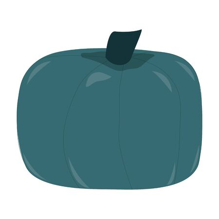 Teal blue buttercup pumpkin isolated on white background. Fall harvest blue green pumpkins. Unique and delicious varieties of winter squashes. Vector Illustration. Ilustrace