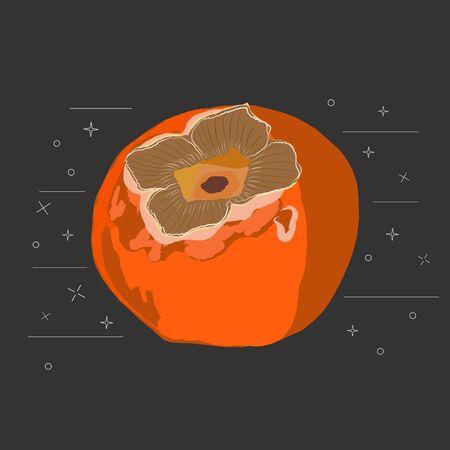 Sharon fruit sliced on black background vector illustration. Orange persimmon whole and cut for design, banner, menu, poster, apparel. Stock Illustratie